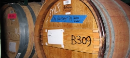 cooper-james-wine-petite-sirah-in-the-barrel